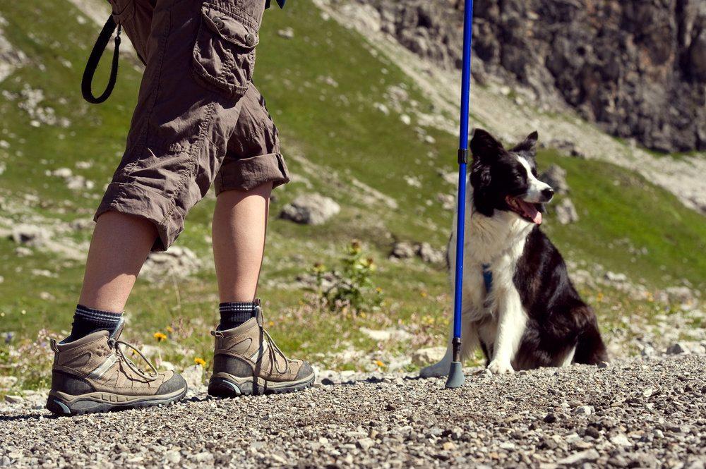 senderismo con perro