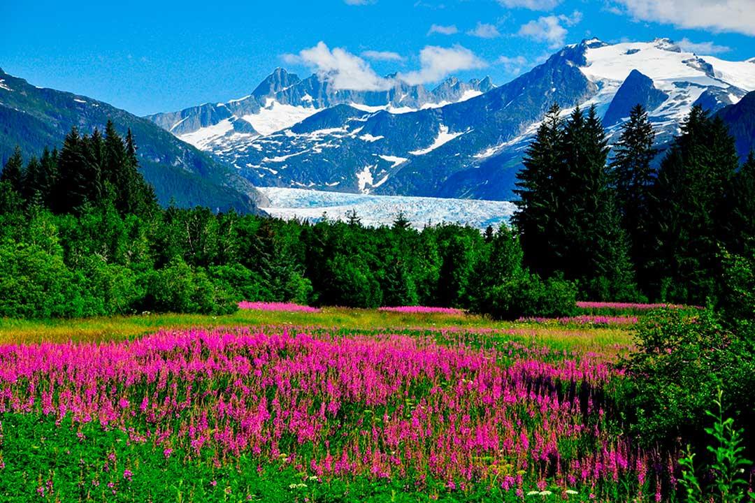 viajar a alaska en agosto te permite contemplar paisajes unicos